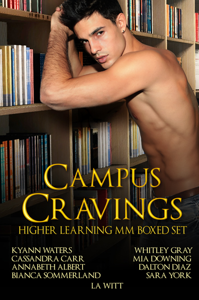 CampusCravings_HigherLearningMMBoxedSet_eBookCover400x600